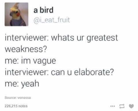 Text - a bird @i_eat_fruit interviewer: whats ur greatest weakness? me: im vague interviewer: can u elaborate? me: yeah Source: vonossa 226,215 notes