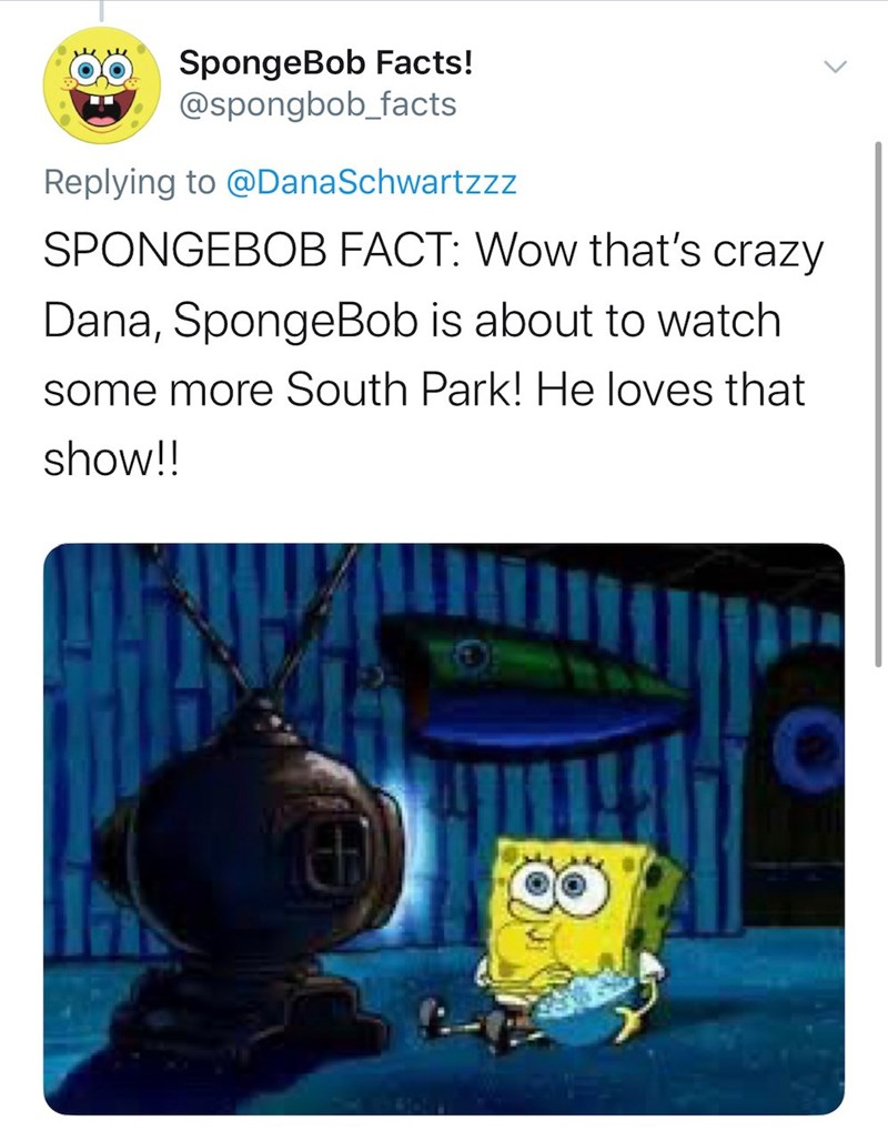 Organism - SpongeBob Facts! @spongbob_facts Replying to @DanaSchwartzzz SPONGEBOB FACT: Wow that's crazy Dana, SpongeBob is about to watch some more South Park! He loves that show!!