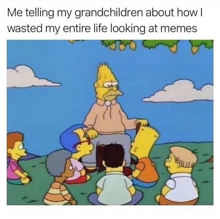 Cartoon - Me telling my grandchildren about how I wasted my entire life looking at memes