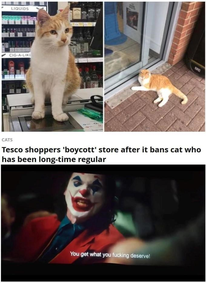 Cat - LIQUIDS AB69 CIG-A-LIKE ENG Tesco shoppers 'boycott' store after it bans cat who has been long-time regular CATS You get what you fucking deserve!