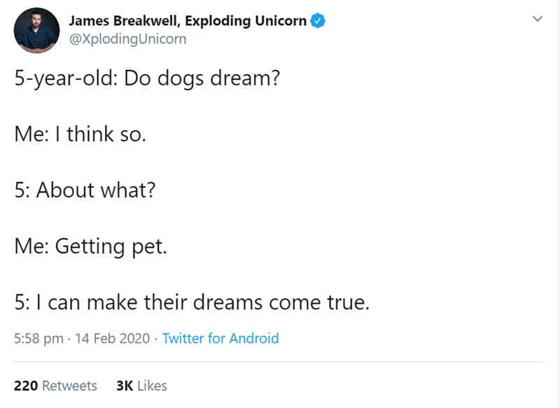 Text - James Breakwell, Exploding Unicorn @XplodingUnicorn 5-year-old: Do dogs dream? Me: I think so. 5: About what? Me: Getting pet. 5:I can make their dreams come true. 5:58 pm · 14 Feb 2020 · Twitter for Android 220 Retweets 3K Likes