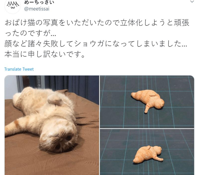 Organism - MA めーちっさい @meetissai おばけ猫の写真をいただいたので立体化しようと頑張 ったのですが. 顔など諸々失敗してショウガになってしまいました. 本当に申し訳ないです。 Translate Tweet