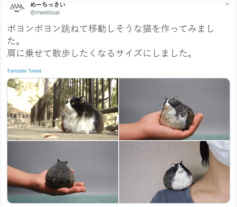 Shih tzu - めーちっさい @meetissai ポヨンポヨン跳ねて移動しそうな猫を作ってみまし た。 肩に乗せて散歩したくなるサイズにしました。 Translate Tweet