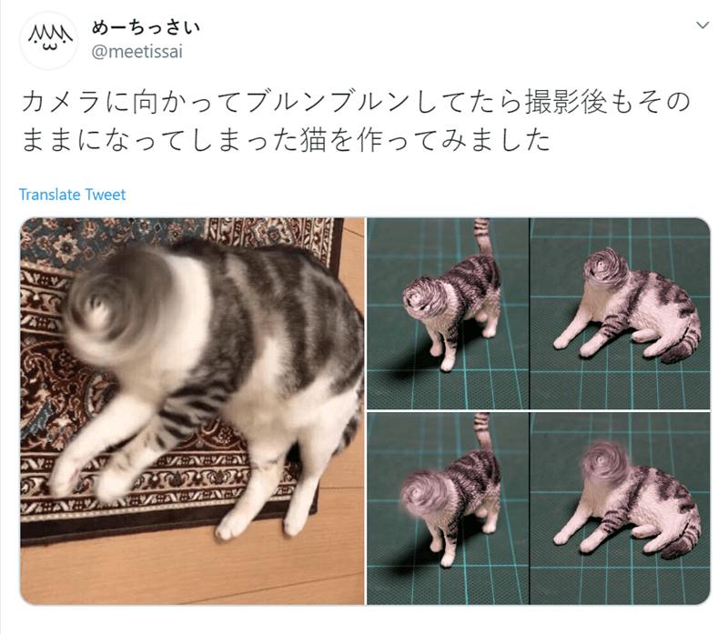Cat - めーちっさい @meetissai カメラに向かってブルンブルンしてたら撮影後もその ままになってしまった猫を作ってみました Translate Tweet EN=ZENY :N:7:NEY A: