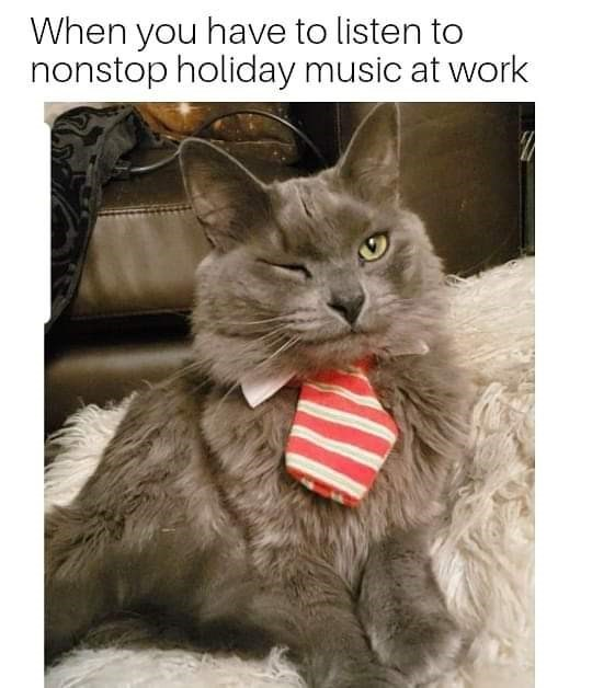 Cat - When you have to listen to nonstop holiday music at work