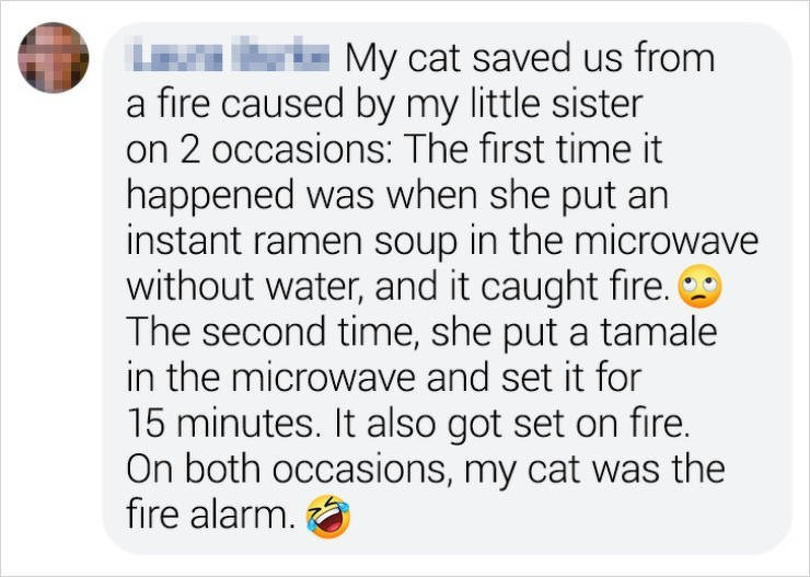 Text - - My cat saved us from a fire caused by my little sister on 2 occasions: The first time it happened was when she put an instant ramen soup in the microwave without water, and it caught fire. The second time, she put a tamale in the microwave and set it for 15 minutes. It also got set on fire. On both occasions, my cat was the fire alarm.