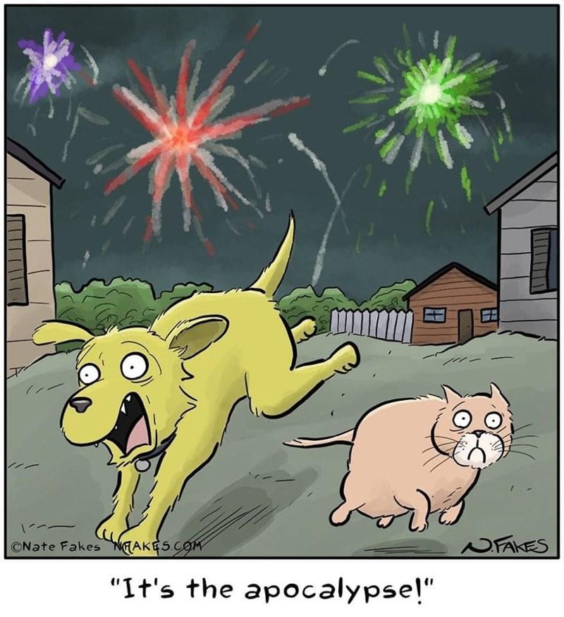 """Cartoon - NFAKES ©Nate Fakes NEAKES.COM """"It's the apocalypse!"""""""