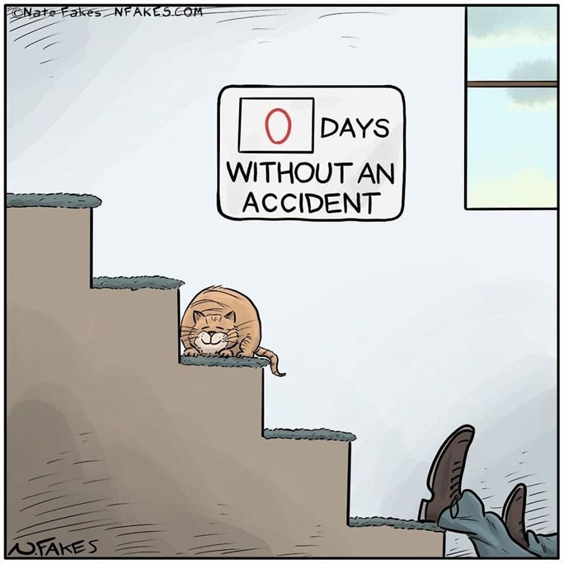 Cartoon - ONate Fakes NFAKES COM O DAYS WITHOUT AN ACCIDENT WFAKES