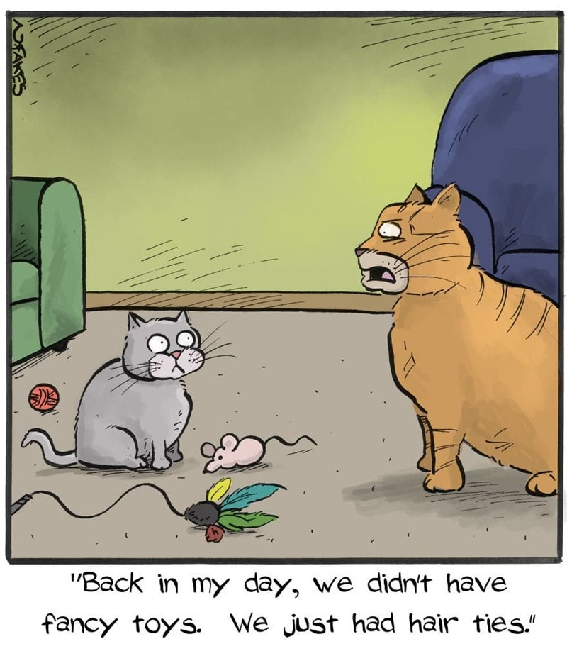 """Cartoon - """"Back in my day, we didn't have We just had hair ties."""" fancy toys. AKES"""
