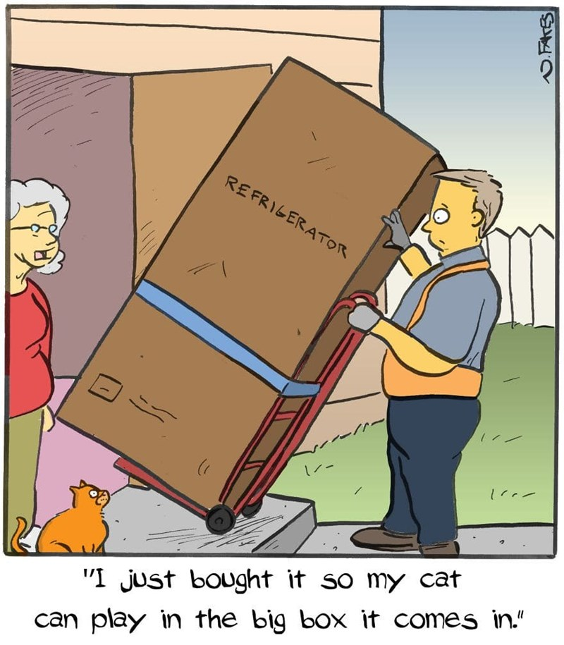"""Cartoon - REFRIGERATOR """"I just bought it so my cat can play in the big box it comes in."""""""