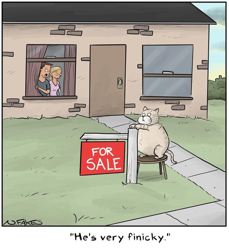 """Cartoon - FOR SALE /--- UFA """"He's very finicky."""""""