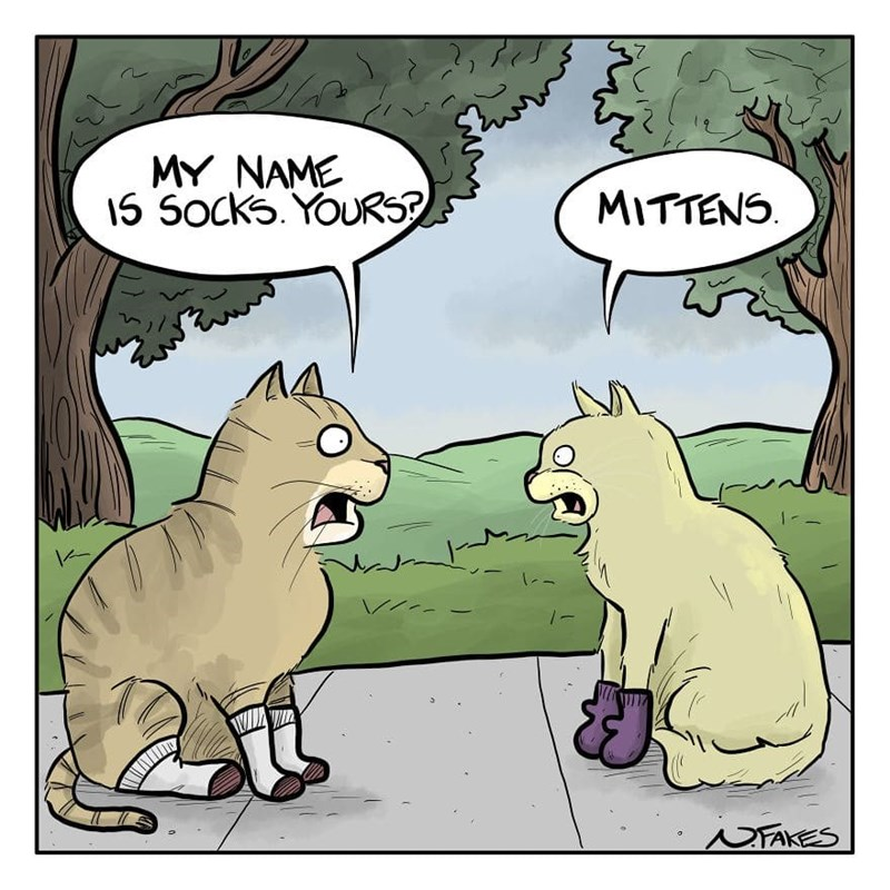 Cartoon - MY NAME 15 Socks. YOURS? MITTENS. NFAKES