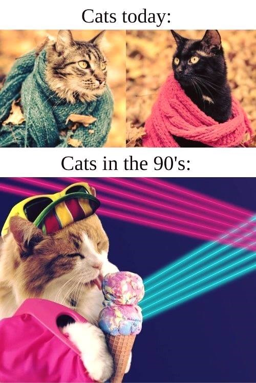 cats today cats in the 90s cats wrapped up in scarves between autumn leafs sepia tones instagram aesthetic cat wearing sunglasses on top of a hat licking ice cream in front of a neon lights background