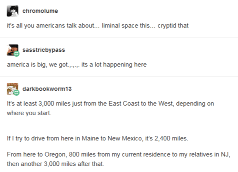 Text - chromolume it's all you americans talk about.. liminal space this... cryptid that sasstricbypass america is big, we got.,. its a lot happening here darkbookworm13 It's at least 3,000 miles just from the East Coast to the West, depending on where you start. If I try to drive from here in Maine to New Mexico, it's 2,400 miles. From here to Oregon, 800 miles from my current residence to my relatives in NJ, then another 3,000 miles after that.
