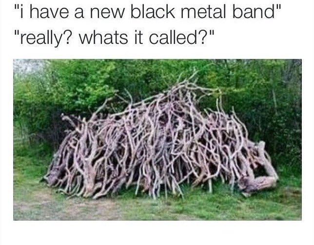 """Root - """"i have a new black metal band"""" """"really? whats it called?"""""""