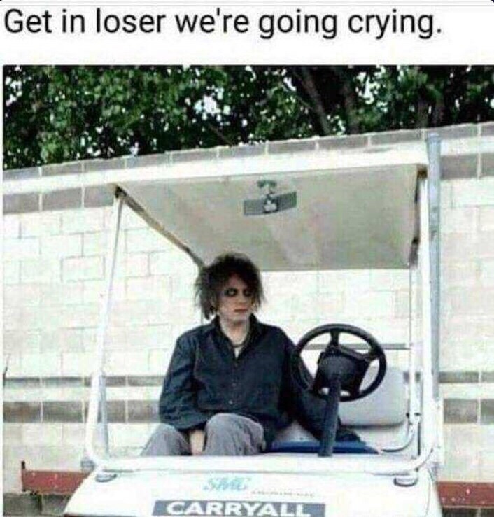 Vehicle - Get in loser we're going crying. CARRYALL