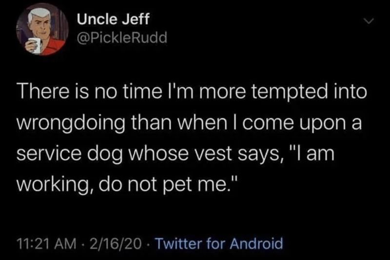 tweet by uncle jeff there is no time i'm more tempted into wrongdoing than when i come upon a service dog whose vest says i am working do not pet me