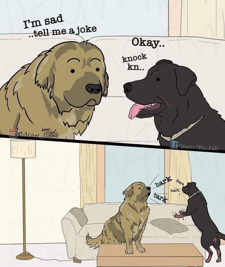 dog memes - 9443066368