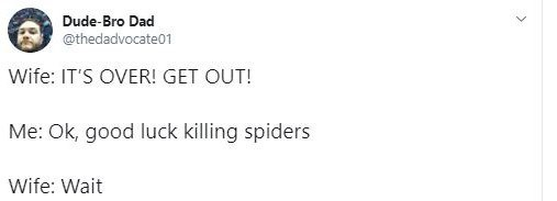 Text - Text - Dude-Bro Dad @thedadvocate01 Wife: IT'S OVER! GET OUT! Me: Ok, good luck killing spiders Wife: Wait