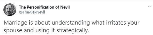 Text - Text - The Personification of Nevil @TheAlexNevil Marriage is about understanding what irritates your spouse and using it strategically.