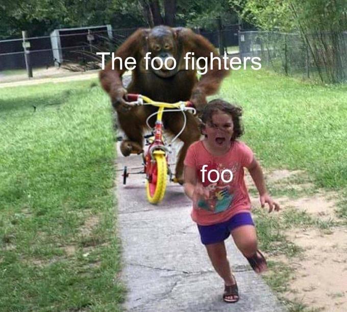 Working animal - The foo fighters foo