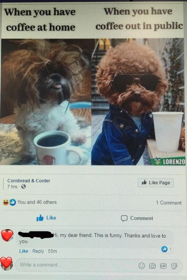 Dog - When you have When you have coffee at home coffee out in public LORENZO Cornbread & Cooter It Like Page 7 hrs O You and 46 others 1 Comment Like Comment Hi, my dear friend. This is funny. Thanks and love to you. Like Reply 55m Write a comment.. GIF