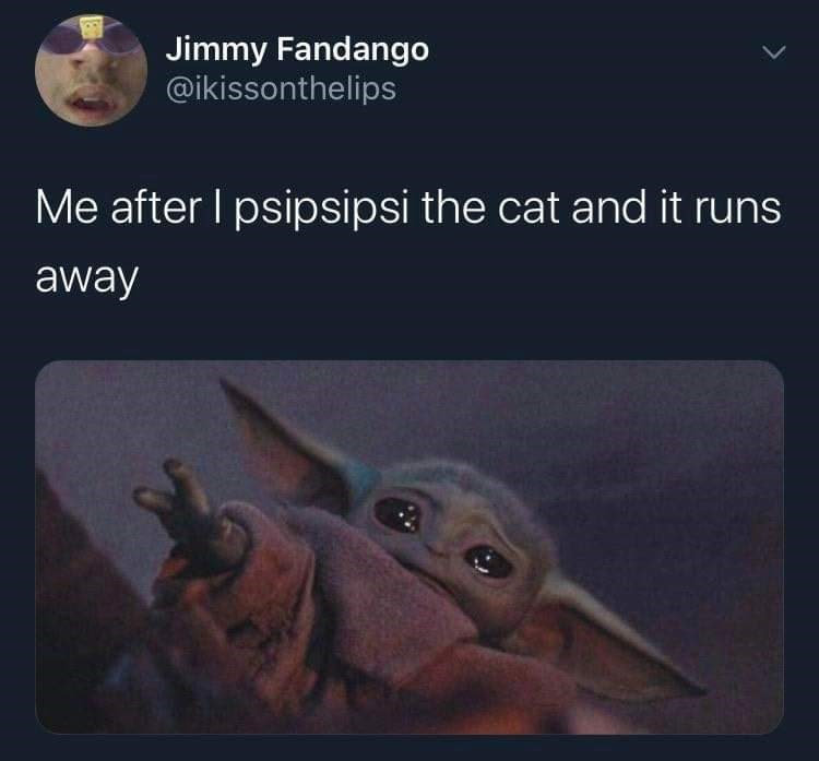 Text - Jimmy Fandango @ikissonthelips Me after I psipsipsi the cat and it runs away