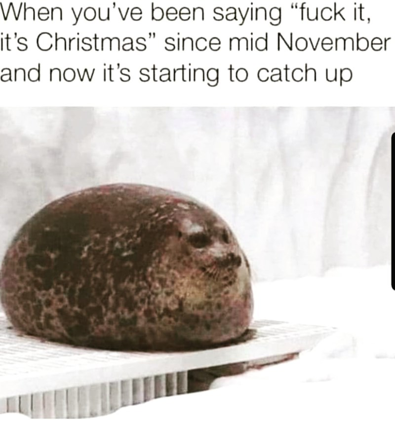 "Rock - When you've been saying ""fuck it, it's Christmas"" since mid November and now it's starting to catch up"