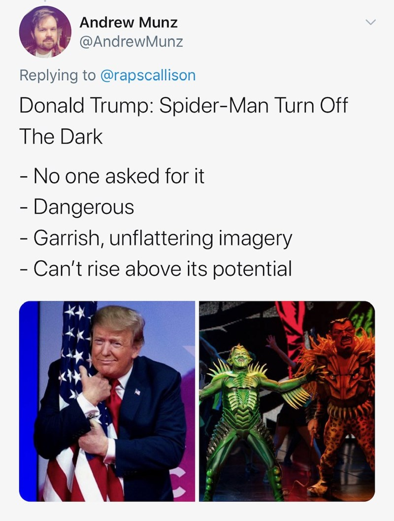 Text - Andrew Munz @AndrewMunz Replying to @rapscallison Donald Trump: Spider-Man Turn Off The Dark - No one asked for it - Dangerous - Garrish, unflattering imagery Can't rise above its potential