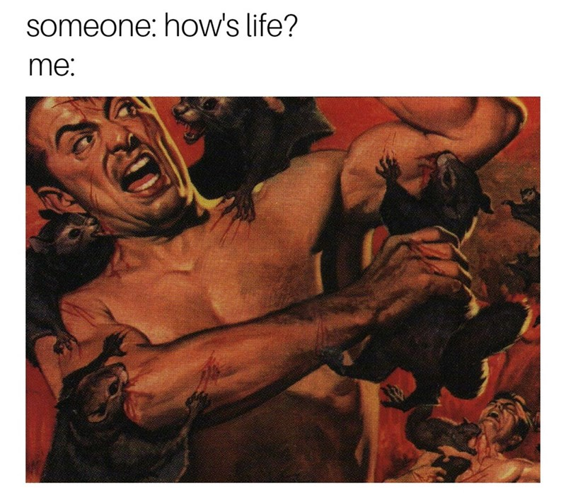 Human - someone: how's life? me: