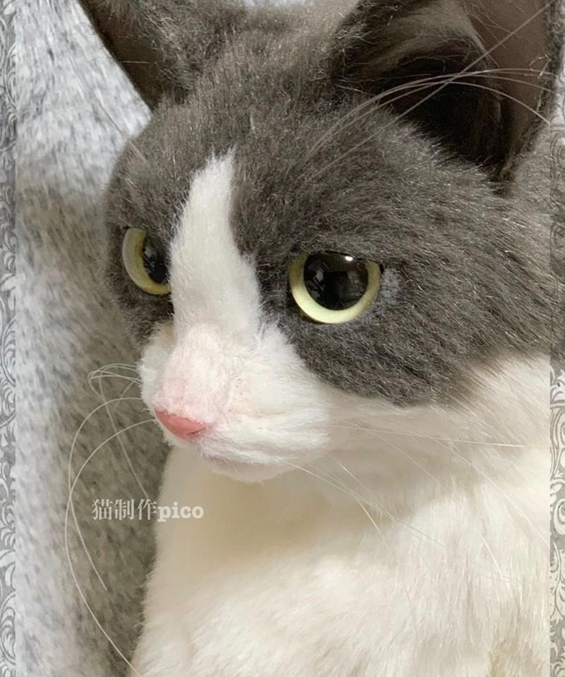 Cat - 猫制作pico
