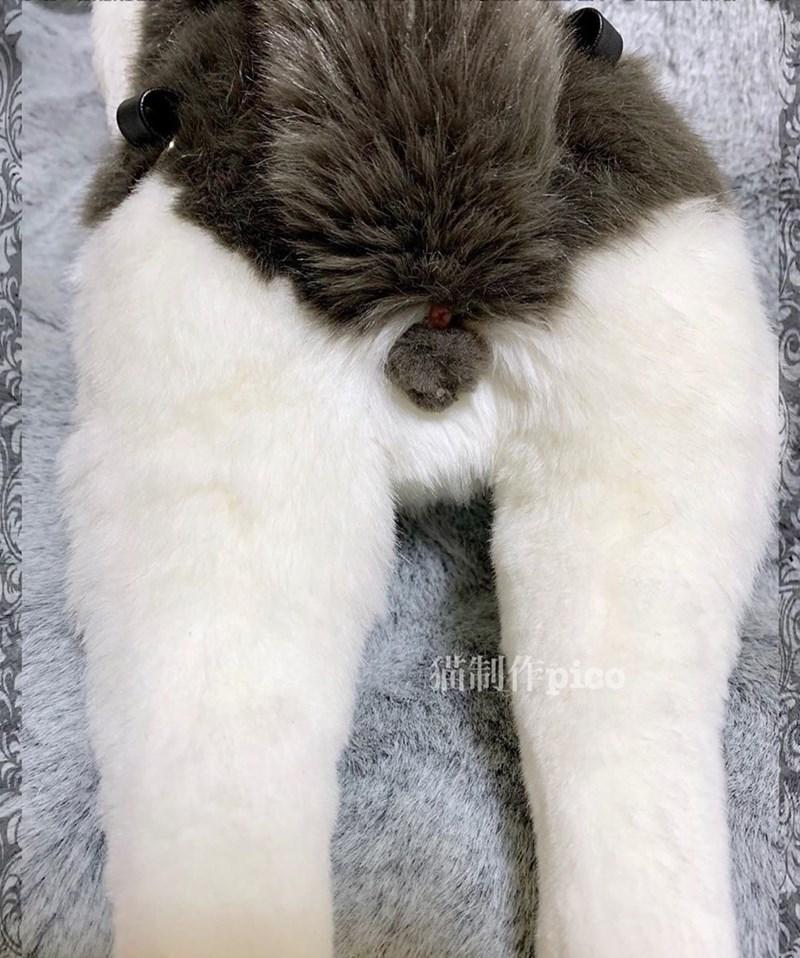 Fur - OHpico