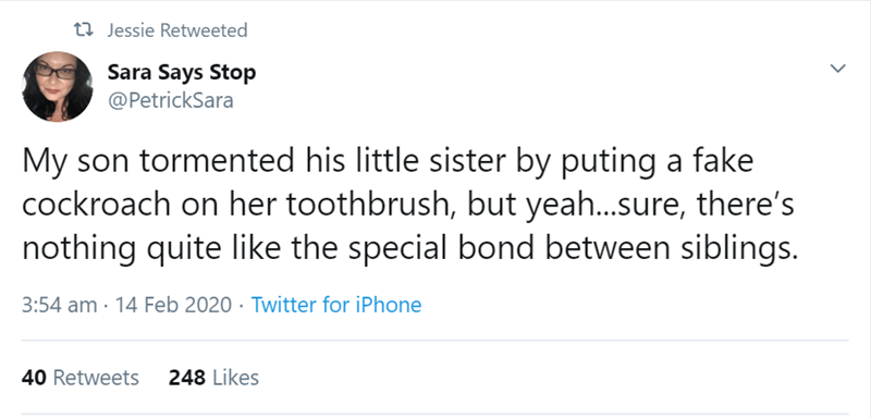 Text - t7 Jessie Retweeted Sara Says Stop @PetrickSara My son tormented his little sister by puting a fake cockroach on her toothbrush, but yeah..sure, there's nothing quite like the special bond between siblings. 3:54 am · 14 Feb 2020 · Twitter for iPhone 40 Retweets 248 Likes
