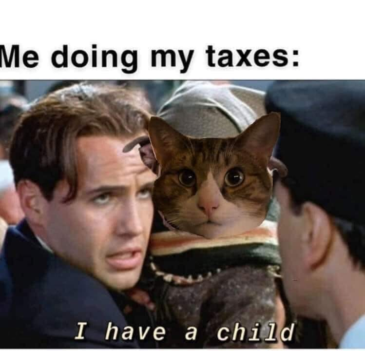 cat meme me doing my taxes: i have a child titanic life boats man holding a cat
