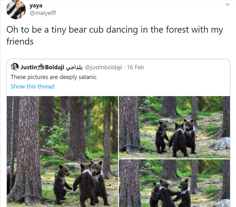 Wildlife - yaya @malyelff Oh to be a tiny bear cub dancing in the forest with my friends Justin Boldaji @justinboldaji · 16 Feb These pictures are deeply satanic Show this thread