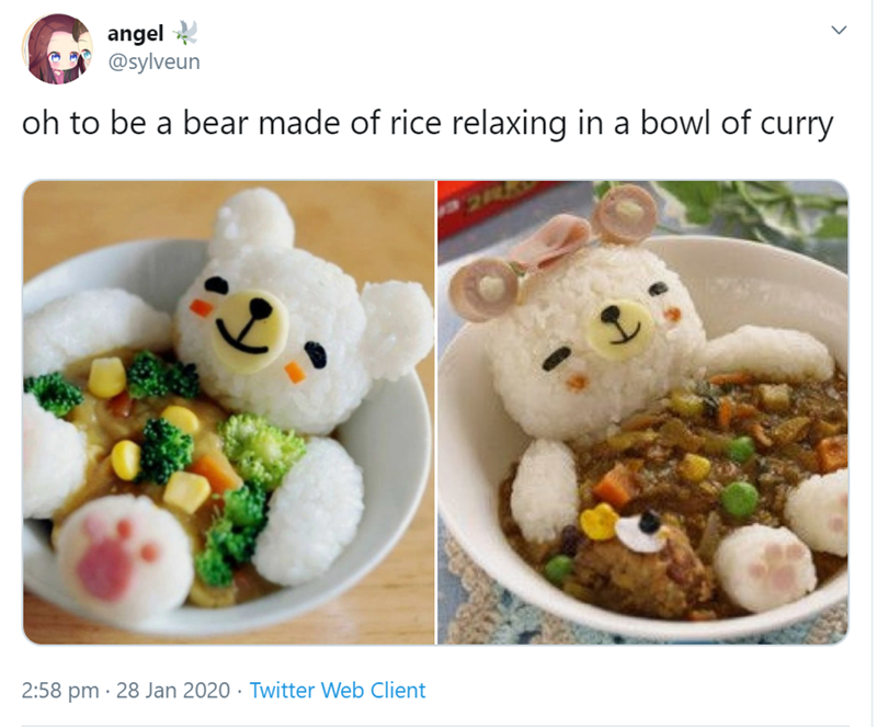 Dish - angel @sylveun oh to be a bear made of rice relaxing in a bowl of curry 2:58 pm · 28 Jan 2020 · Twitter Web Client