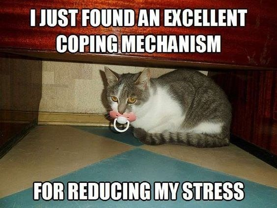Photo caption - I JUST FOUND AN EXCELLENT COPING MECHANISM FOR REDUCING MY STRESS