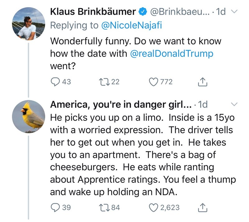 Text - Klaus Brinkbäumer O @Brinkbaeu.. 1d v Replying to @NicoleNajafi Wonderfully funny. Do we want to know how the date with @realDonaldTrump went? Q 43 27 22 O 772 America, you're in danger girl... · 1d He picks you up on a limo. Inside is a 15yo with a worried expression. The driver tells her to get out when you get in. He takes you to an apartment. There's a bag of cheeseburgers. He eats while ranting about Apprentice ratings. You feel a thump and wake up holding an NDA. 39 2784 ♡ 2,623