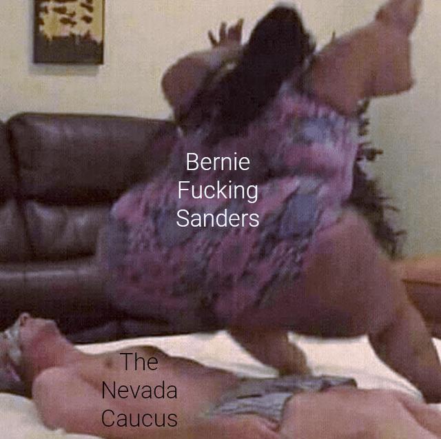 Pink - Bernie Fucking Sanders The Nevada Caucus