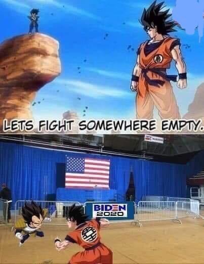 Animated cartoon - LETS FIGHT SOMEWHERE EMPTY. BIDEN 2020