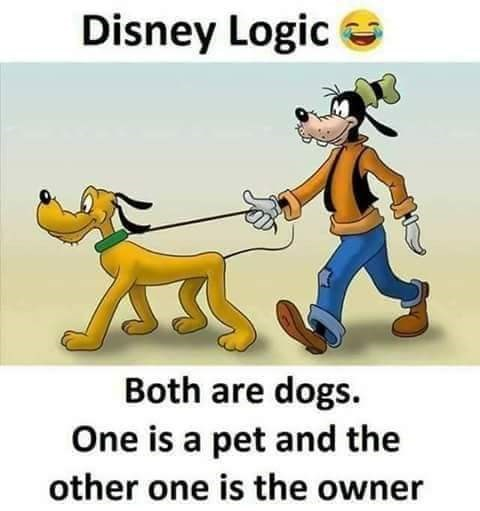Cartoon - Disney Logic Both are dogs. One is a pet and the other one is the owner