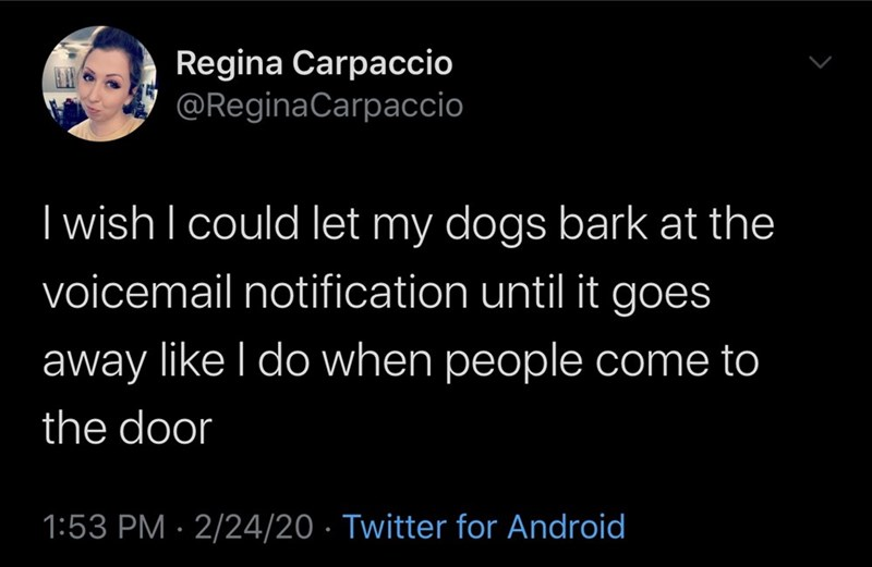 Text - Regina Carpaccio @ReginaCarpaccio I wish I could let my dogs bark at the voicemail notification until it goes away like I do when people come to the door 1:53 PM · 2/24/20 · Twitter for Android