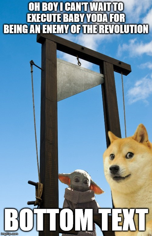 Dog - OH BOYI CANT WAIT TO EXECUTE BABY YODA FOR BEING AN ENEMY OF THE REVOLUTION BOTTOM TEXT imgilip.com