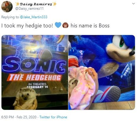 Organism - Daisy Ramirez+ @Daisy_ramirez11 Replying to @Jake_Martin333 I took my hedgie too! his name is Boss SONIC THE HEDGEHOG IN THEATRES EEBRUARY 14 6:50 PM · Feb 25, 2020 - Twitter for iPhone