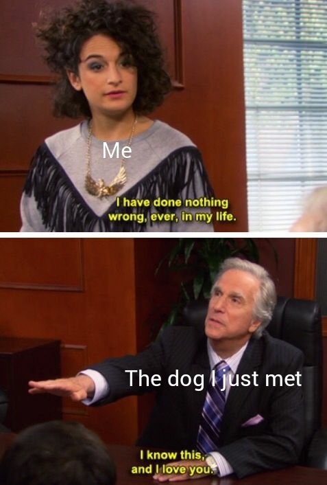 funny meme parks and rec mona lisa | me: I have done nothing wrong ever in my life the dog i just met: i know this and i love you