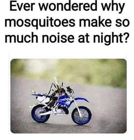 ever wondered why mosquitoes make so much noise at night? pic of an insect riding a tiny miniature bike