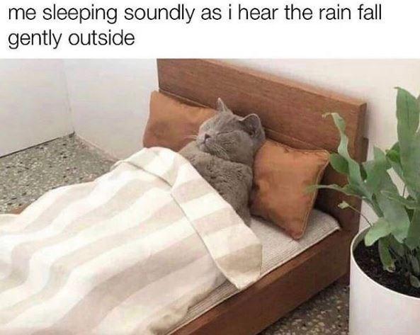 Product - me sleeping soundly as i hear the rain fall gently outside