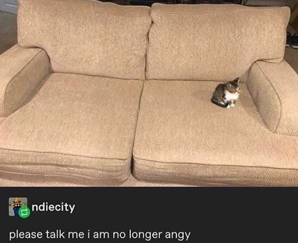 Couch - ndiecity please talk me i am no longer angy