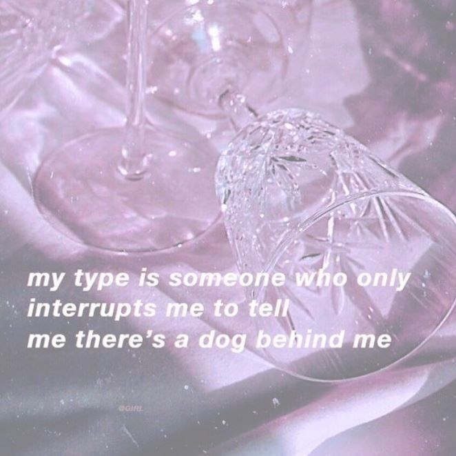 Pink - my type is someone who only: interrupts me to tell me there's a dog behind me OGIRL