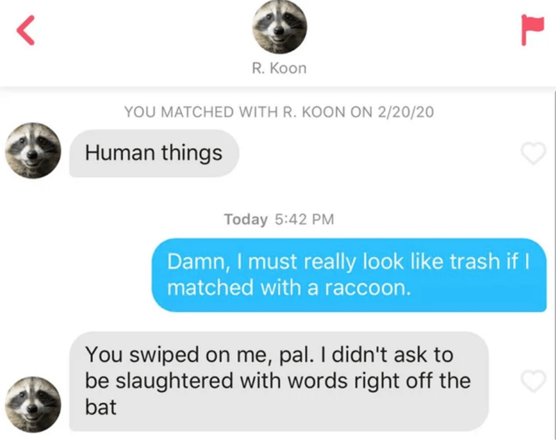 Text - R. Koon YOU MATCHED WITH R. KOON ON 2/20/20 Human things Today 5:42 PM Damn, I must really look like trash if I matched with a raccoon. You swiped on me, pal. I didn't ask to be slaughtered with words right off the bat